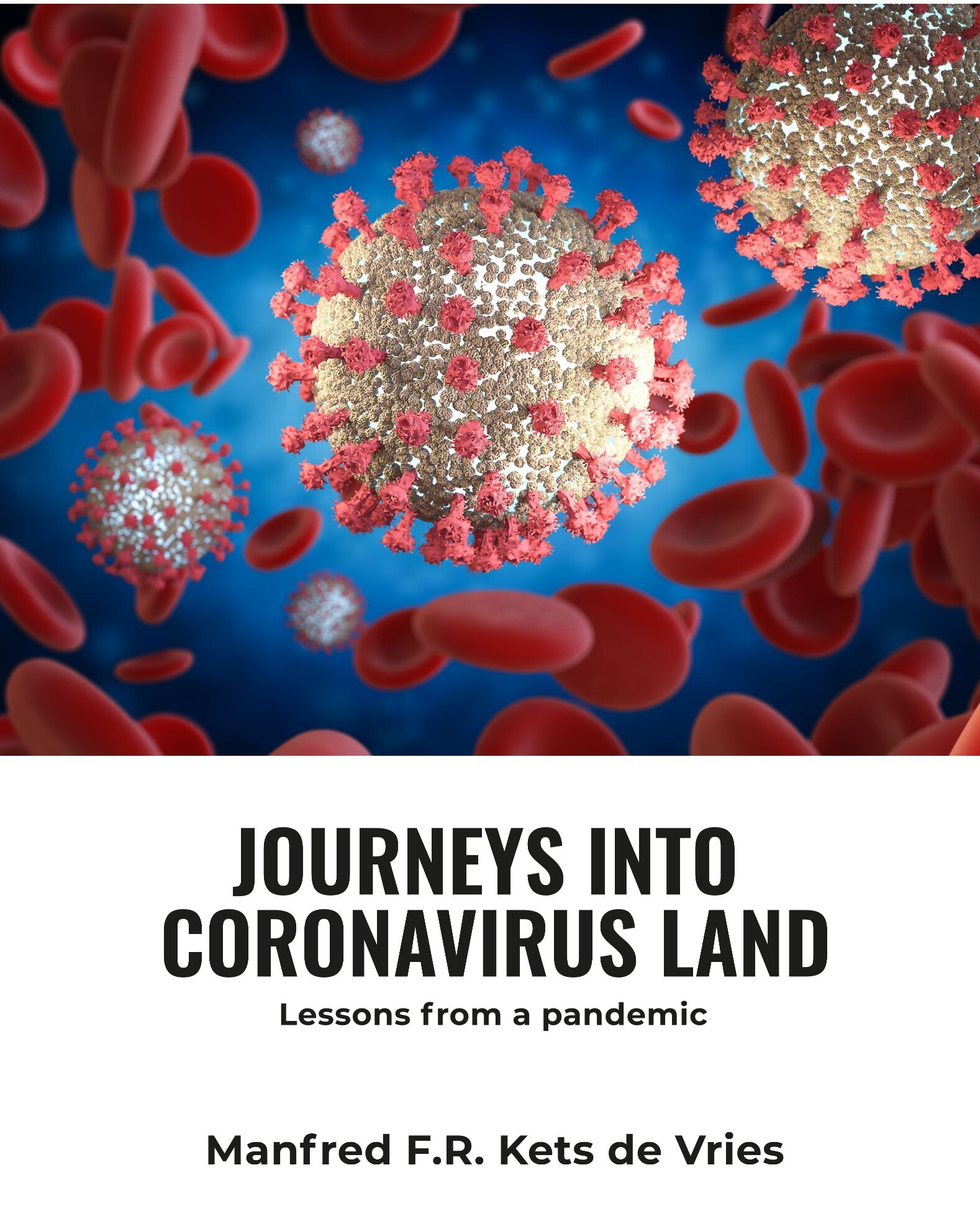 Journeys into Coronavirus Land: Lessons from a pandemic